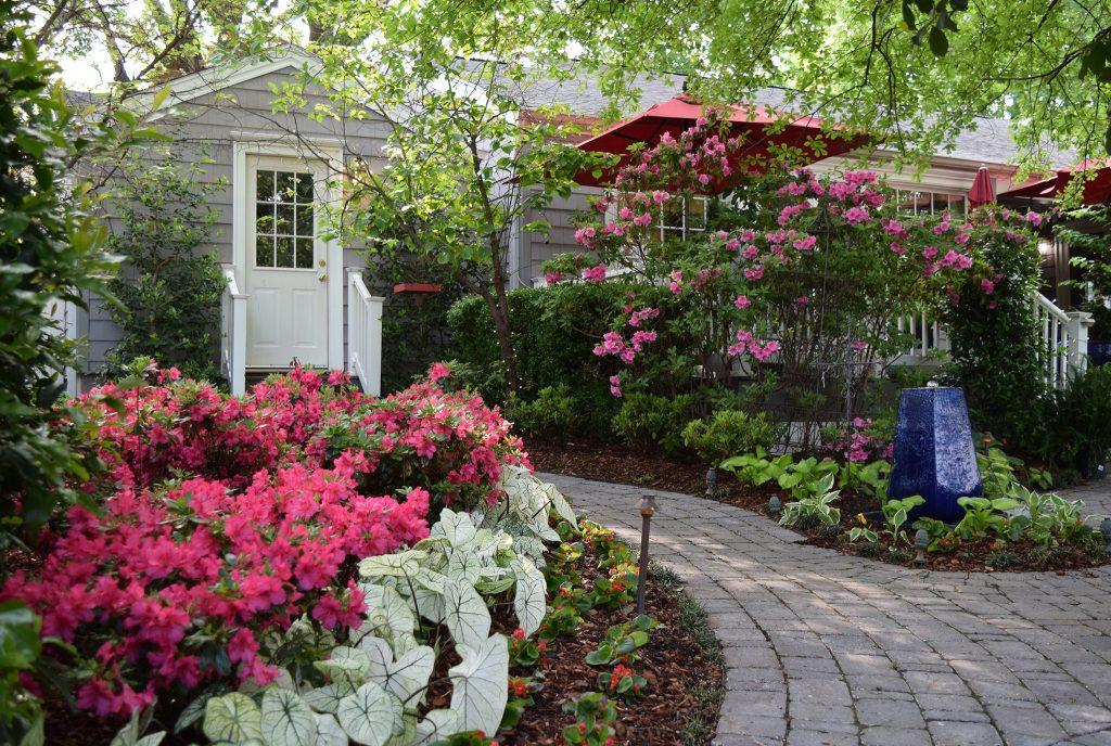 Landscape Design Pink Azaleas