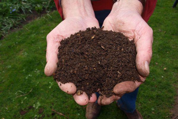 Secrets of Soil Blog Post