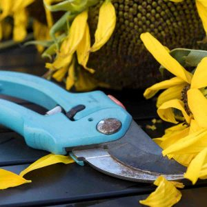 Garden Tools & Supplies